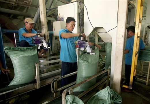 Rice is packaged at the privately-owned Cỏ May Company in Đồng Tháp Province. The private sector has been driving force for growth in the first three quarters.