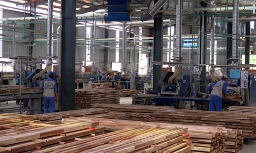 Wood processed at Woodland Joint Stock Company in Tuyên Quang Province.